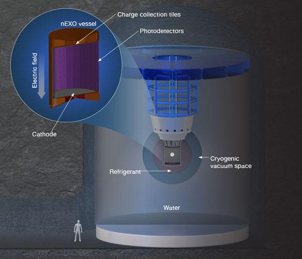 Schematic of the nEXO detector